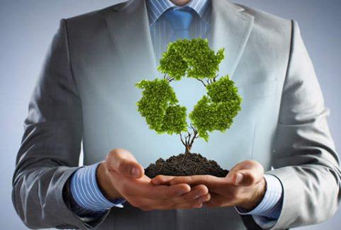 Perícia Judicial Ambiental